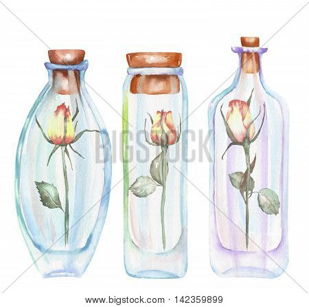 Illustration romantic and fairytale watercolor bottles with roses inside, hand drawn isolated on a white background