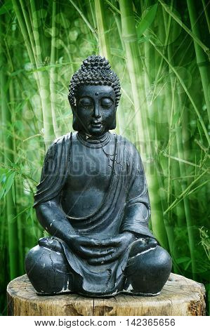 Buddha and bamboo plant in the background