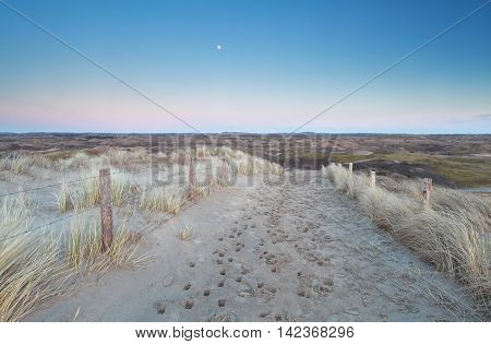 sand path to dunes in dusk and full moon