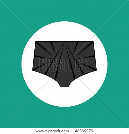 Lace panties vector illustration on the white background. Lingerie. Vector illustration