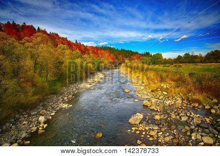View of mountain river at autumn time. Colorful foliage