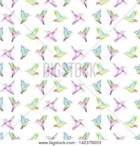 Seamless pattern of colored colibri painted in watercolor on a white background