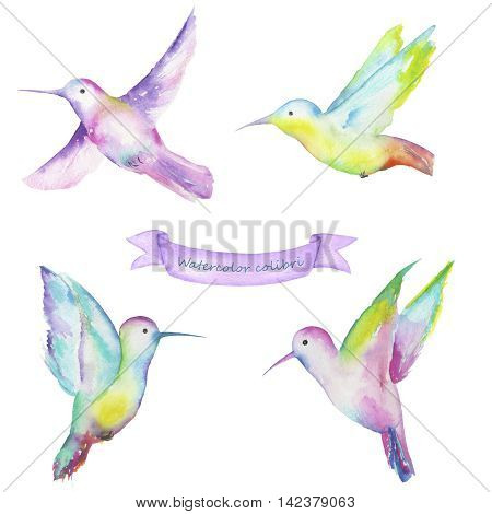 Set with a samples of colibri painted in watercolor on a white background