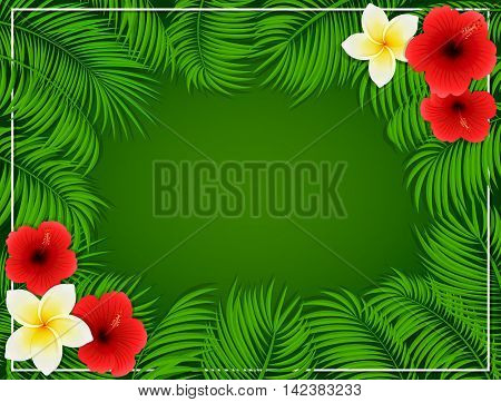Summer background with Hawaiian flowers, frangipani and hibiscus with set of palm leaves on green background, illustration.