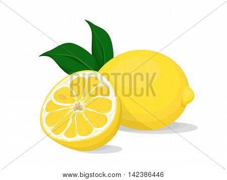 Illustration of fresh lemon with leaf and a slice of second lemon on white background.