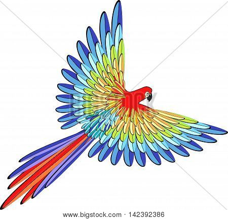 Caribbean Red The Parrot Flying. Vector Illustration