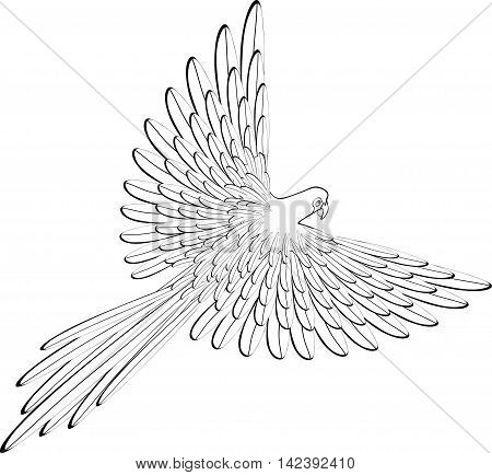 Coloring Of The Caribbean Parrot Flying. Vector Illustration