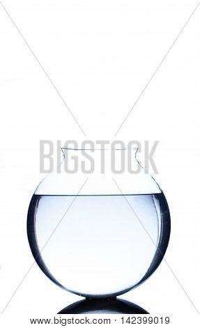 Empty fsh bowl with blue water isolated on white
