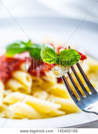 Pasta Penne with Tomato Bolognese Sauce Parmesan Cheese and Basil on a Fork. Mediterranean food.Italian cuisine.