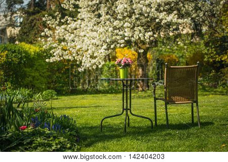 Relaxing place-table and  chair in flowering garden.