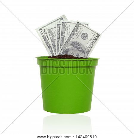Business finance saving banking - concept. Us dollars money growing in a pot