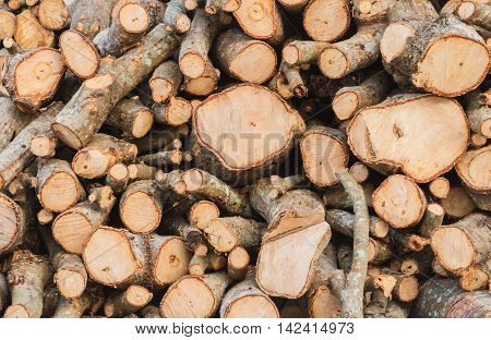 Firewood background prepare the surface by sawing machines.