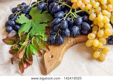 Still life - bright fruit on light fabric. Vintage black and green grapes and pomegranate branch. Concept - healthy food.