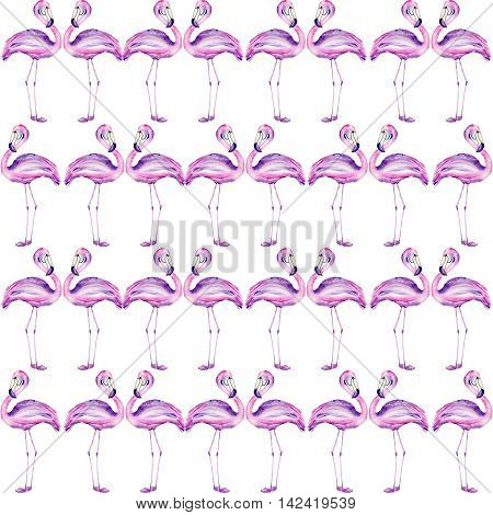 A seamless pattern with a flamingo painted in watercolor on a white background