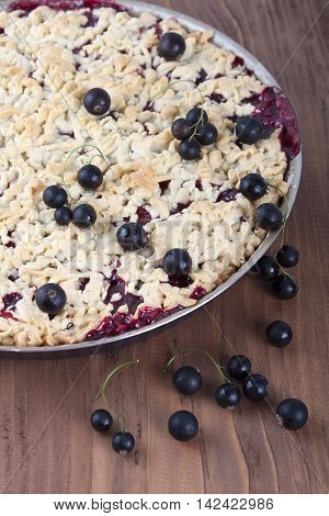 Sand cake with black currant in a baking dish and currant berries lie on the cake.