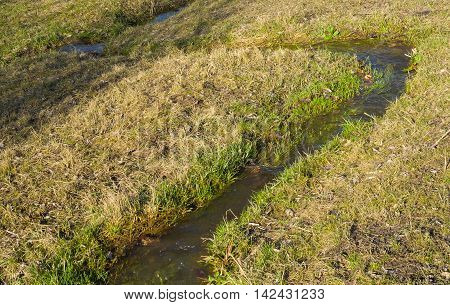 Small stream at spring season as start of the life on a water-meadow