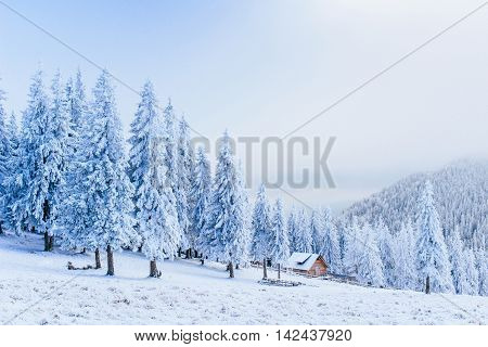 cabin in the mountains in winter. Carpathians. Ukraine, Europe