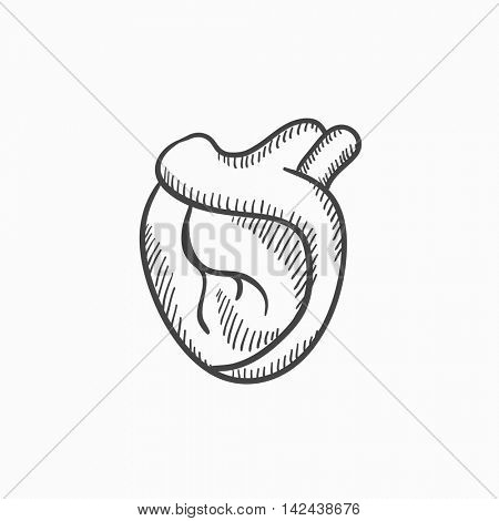 Heart vector sketch icon isolated on background. Hand drawn Heart icon. Heart sketch icon for infographic, website or app.