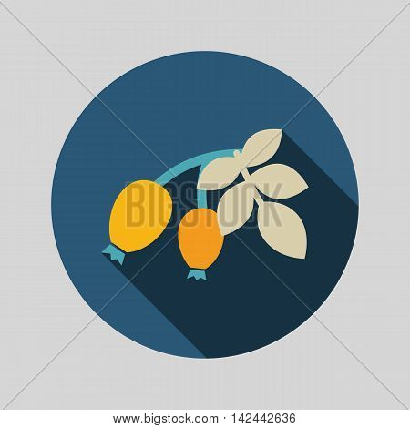 Rosehip branch with red berries flat icon. Berry fruit. Vector illustration eps 10