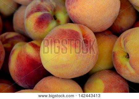Group of Fuzzy Ripe Peaches: In a bin at the farmers market.