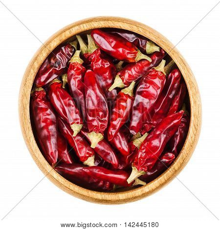 Red hot tabasco chili peppers in a bowl on white background. Dried fruits of Capsicum frutescens, used as spice and for tabasco sauce. Edible, raw and organic food. Isolated close up macro photo.