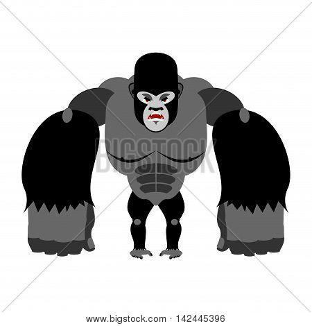 Angry Gorilla On Its Hind Legs. Aggressive Monkey On White Background. Wild Wrathful Animal. Large F