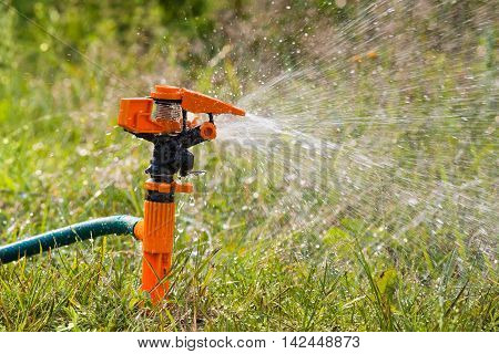 garden sprinkler spraying water over green grass closeup