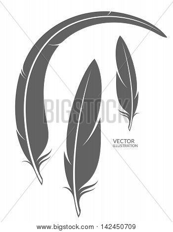 Isolated feathers on white background. (EPS 10)