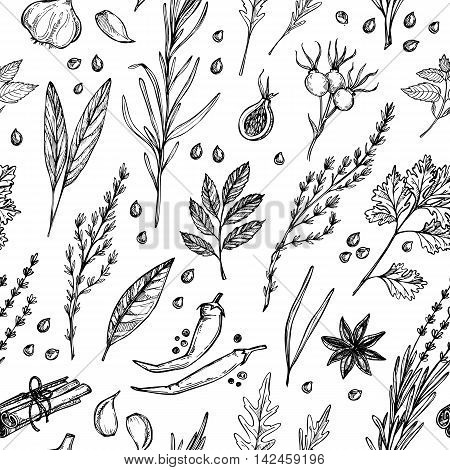 Hand Drawn Vintage Background - Herbs And Spices. Vector Seamless Pattern. Organic Drug Plants. Bota