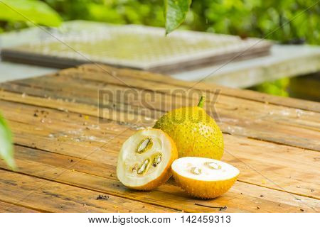 Green baby jackfruit and green baby jackfruit slice on wooden background.Fruit for health and stillife.