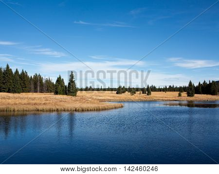 Dead pond in the Ore Mountains, Czech republic