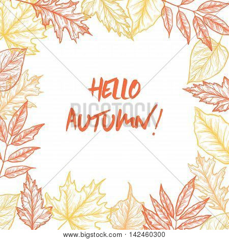 Hand Drawn Vector Illustrations. Frame Of Fall Leaves. Forest Design Elements. Autumn