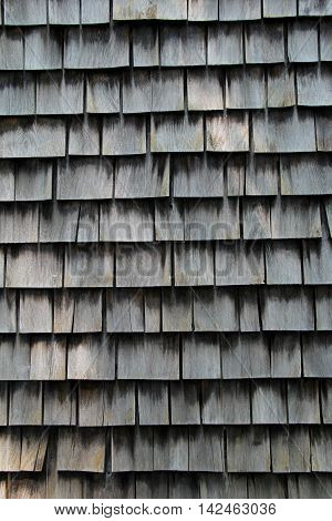 Weathered gray shingles on old, cape cod style home.