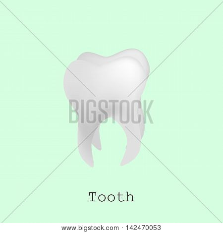 Tooth for registration of dentistry. Vector isometric illustration