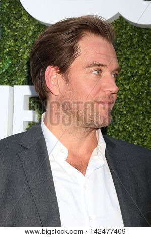 LOS ANGELES - AUG 10:  Michael Weatherly at the CBS, CW, Showtime Summer 2016 TCA Party at the Pacific Design Center on August 10, 2016 in West Hollywood, CA