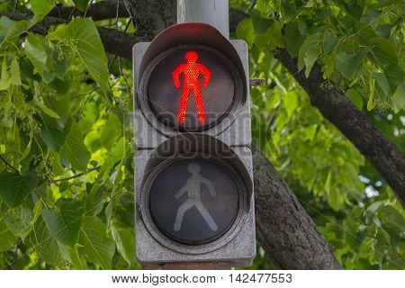Red traffic signal hanging on wood background. Transport