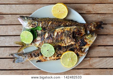 Fresh and healthy sea fish seabass and salema porgy grilled and served with lemon lime and basil in a white porcelain plate on old wooden table