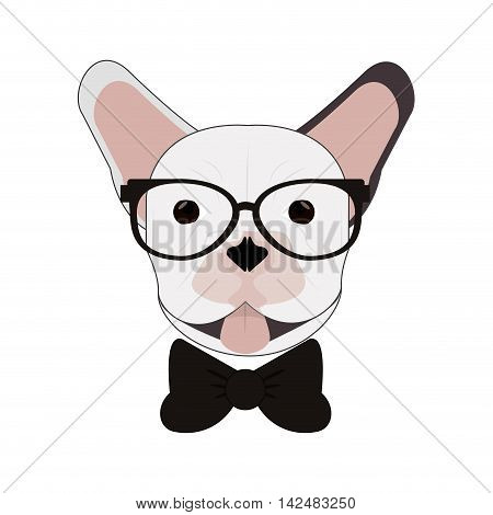 flat design hipster french bulldog icon vector illustration