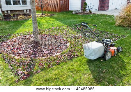 Grass Bagging In Fall In The Neighbourhood