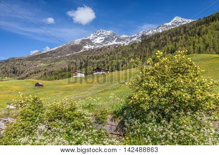 Mountain Farms In South Tyrol, Italy