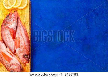 Fish Flat Lay
