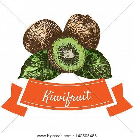 Vector illustration colorful set with kiwifruit. Illustration of fruits