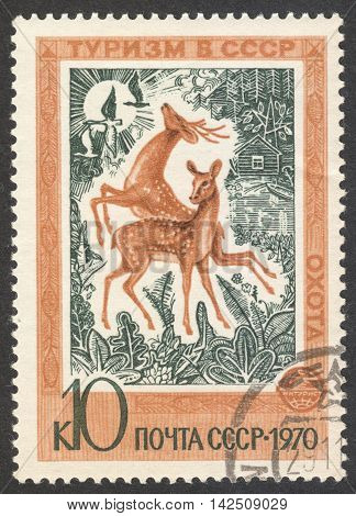 MOSCOW RUSSIA - CIRCA APRIL 2016: a post stamp printed in the USSR shows two deers the series