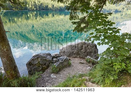 Stones And Trees In Front Of Vorderer Langbathsee In Austria, Salzkammergut