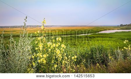 Beautiful view of the plain river in lowland during the summer evening. Village landscape.
