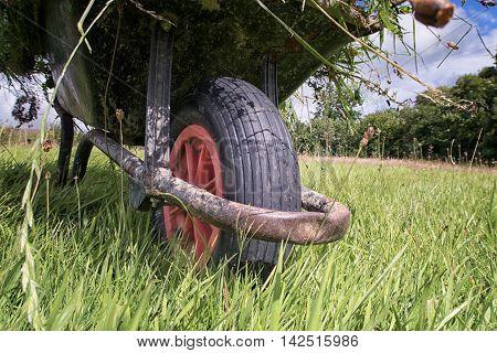 Garden Wheel Barrow On Long Grass