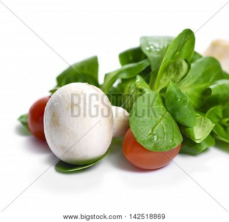 Fresh garden salad with corn salad, cherry tomatoes and white mushrooms, isolated on white.