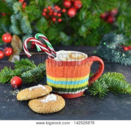 Close up of cozy knitted red cup with Christmas drink, cookies and sweet canes. Winter and Christmas time still life with natural conifer and cocoa, tea or coffee