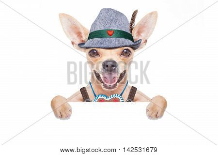 bavarian german chihuahua dog with gingerbread and hat with blackboard or placard banner isolated on white background ready for the beer celebration festival in munich