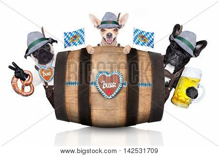 group or team of bavarian german dogs with gingerbread and hat behind barrel isolated on white background ready for the beer celebration festival in munich